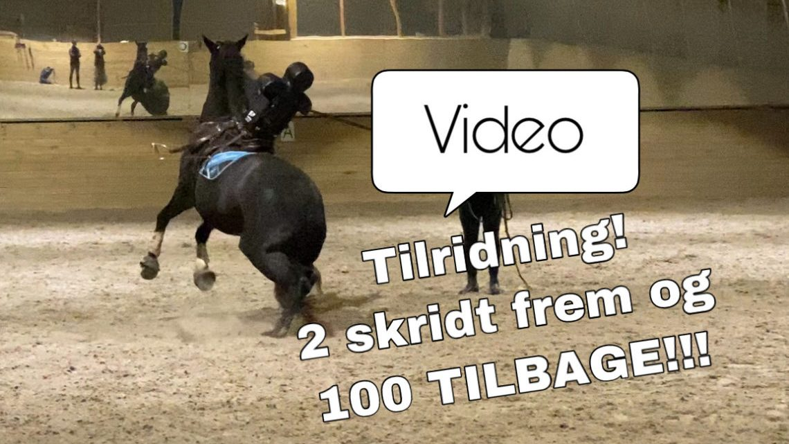 En svær tilridning (video)